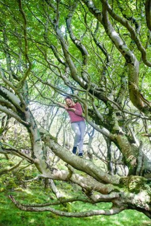 A woman climbing a tree on the Isle of Ulva.