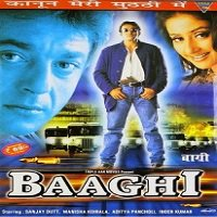 Baaghi (2000) Watch Full Movie Online DVD Free Download