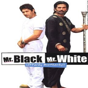Mr Black Mr White (2008) Full Movie Watch Online HD Free Download