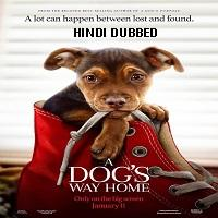 A Dogs Way Home (2019) Hindi Dubbed Full Movie Watch Online HD Free Download