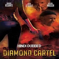 Diamond Cartel (2017) Hindi Dubbed Full Movie Watch Online HD Free Download
