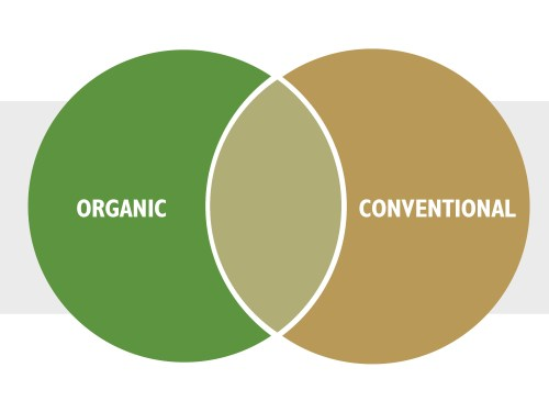 small resolution of  infographic organic conventional venn diagram