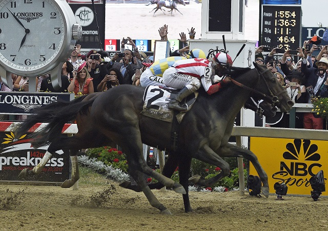 Preakness Stakes Horse Racing_309350