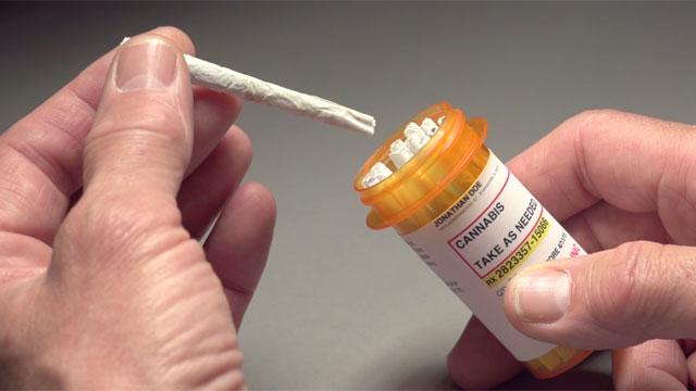 medical marijuana_481871-873703986
