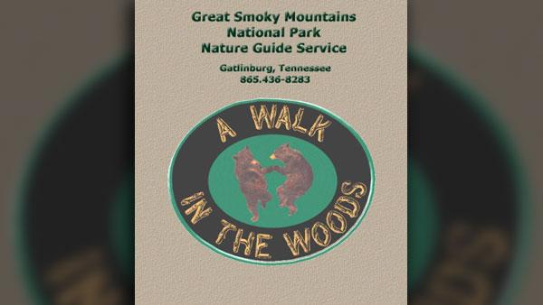 walkinthewoods_1532434760670.jpg
