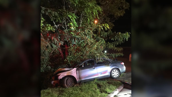 Suspects try to flee from deputies, wreck car