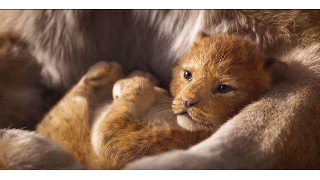 Lion King_1542943213019.JPG_62947115_ver1.0_640_360_1542979744421.jpg.jpg