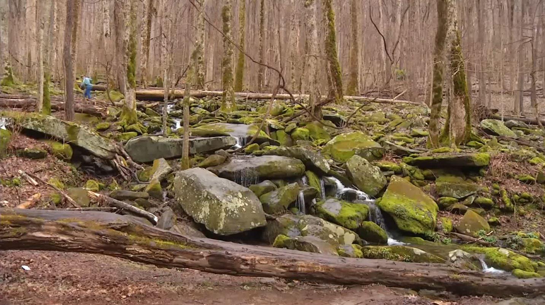 GSMNP_happy valley ridge_2_waterfalls_1546402945670.JPG.jpg