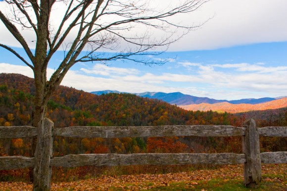 Cataloochee Valley_237047