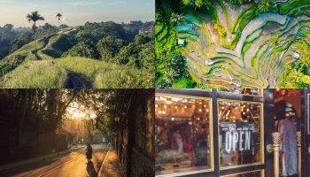 Monkey Forest Ubud Entrance Fee Cost Latest Update Price 2020
