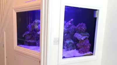 Tank in Wall by Waterbox