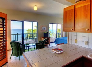 Apartment Kitchen View