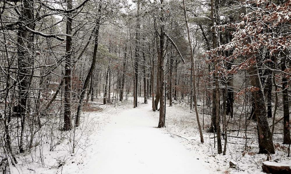 A winter trail near Westport, Ontario..