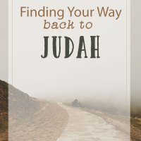 The Road Back to Judah