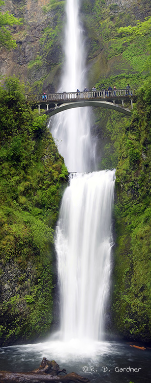 Multonomah Falls Wallpaper Multnomah Falls In The Columbia River Gorge Near Portland