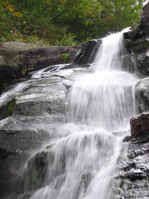 Fall Vermont Wallpaper White Oak Canyon Shenandoah National Park