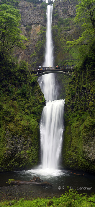 Multonomah Falls Wallpaper Multnomah Falls In The Columbia River Gorge Near Portland