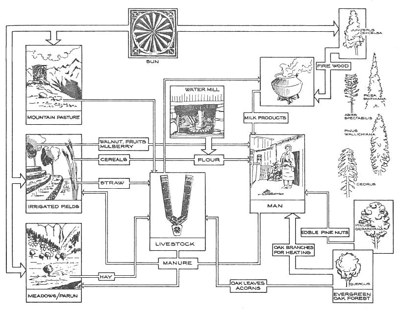 WaterHistory.org
