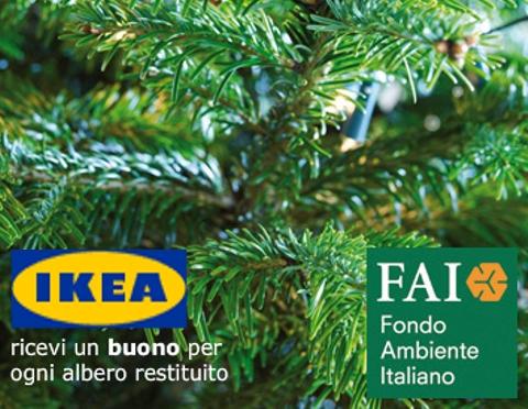 Ikea Sostiene La Campagna Compra Una Foresta Wateronline