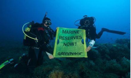 Greenpeace: ecco i dati sulla pesca che salva i mari