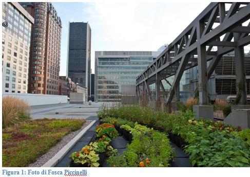 Montreal roof garden 1