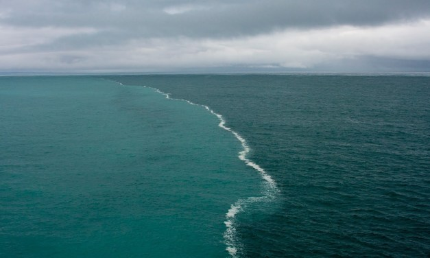Baltic sea. The main problem is the pollution of oil and its products