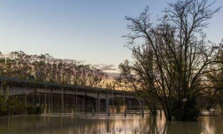 """Un Po di paura a Brescello: la piena dello scorso novembre  ha offerto un buon esempio di """"gestione dell'emergenza"""". Da considerare per il futuro."""