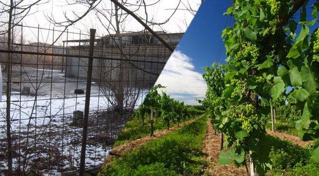 Una #Franciacorta di vino e rifiuti