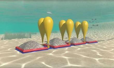 Cosa ci fanno dei grande palloni sott'acqua?