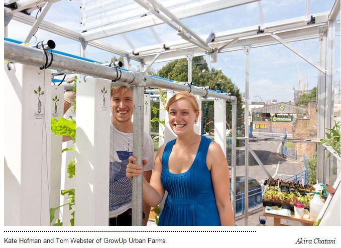 Come i farmers urbani di Londra stanno coltivando la città