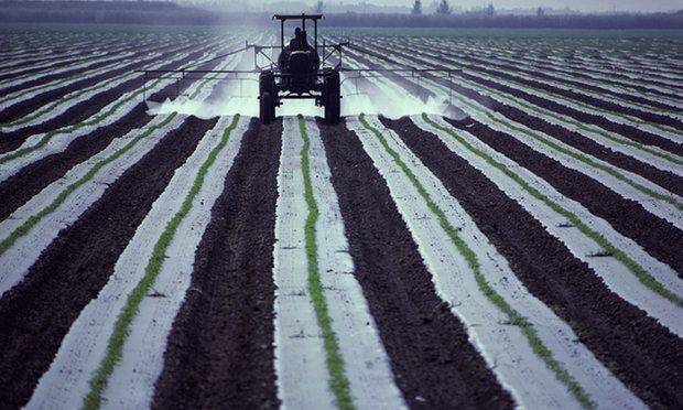 Agricoltura inquinante