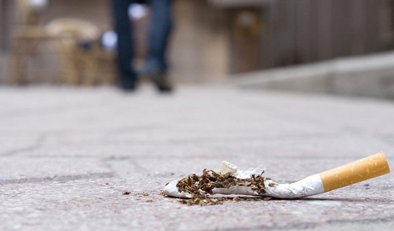 I mozziconi: trappole mortali per la flora e la fauna