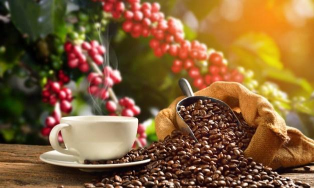 CAFFÈ IN CIRCOLO