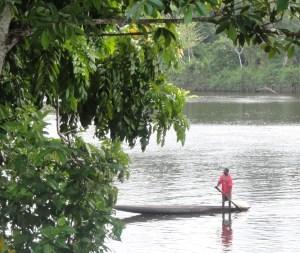 Suriname - lodge tour boven Suriname