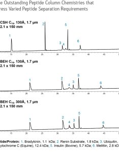 Peptide analysis also acquity uplc columns waters rh