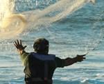 wai-net-fishing