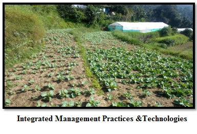 Integrated Management Practices and Technologies