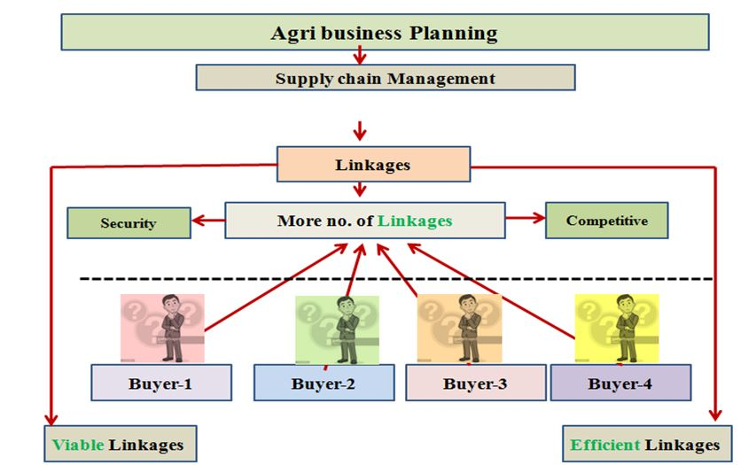 Agribusiness- Market Linkages