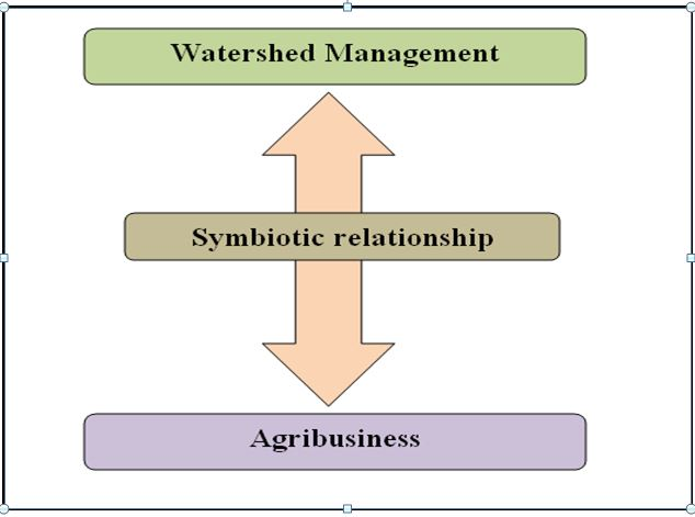 Watershed Management and Agribusiness -A Symbiotic Growth