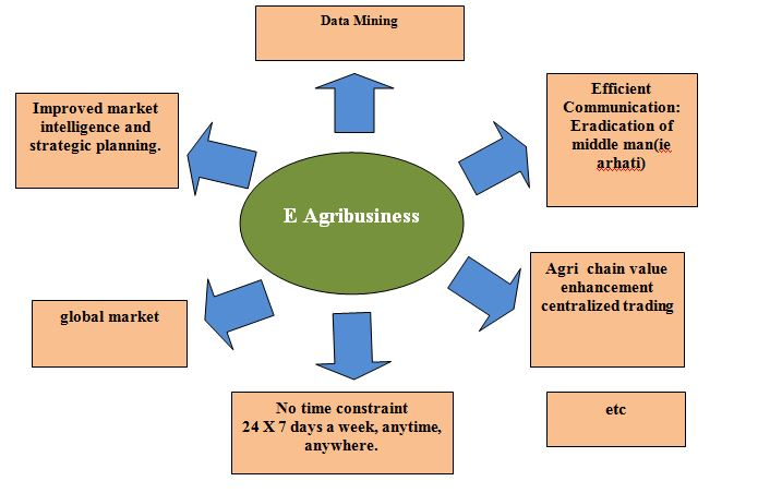 Some advantages of E Agribusiness