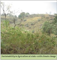 Sustainability in Agriculture at stake –with climate change