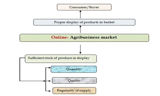 Online Agribusiness –requirement