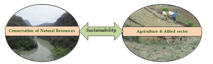 Interdependency for Sustainability in Watershed Management