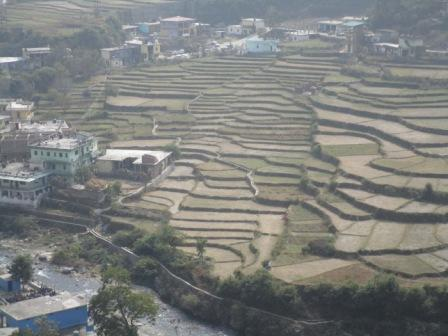 A view of Agriculture land in Uttarakhand