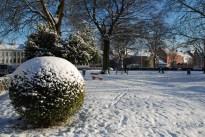 winter-in-het-park-003