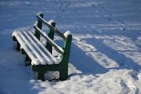 winter-in-het-park-006