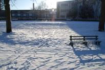 winter-in-het-park-017