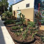 Water Wise Landscape Solutions, Beachside Montessori School teaching garden full view