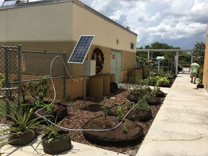 Water Wise Landscape Solutions, Beachside Montessori School teaching garden solar hookup