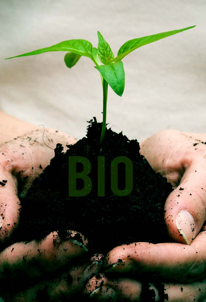 Bio Fertilization Healthy Soil